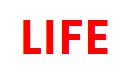 [LIFE] 신세계 강남점(스트리트캐쥬얼) 팝업매장 매니저 및 주니어 채용